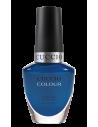 CUCCIO COLOUR GOT THE NAVY BLUES